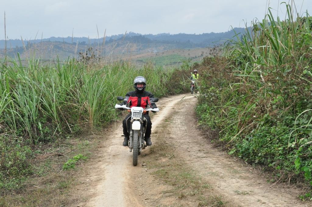 motorbike tours 1024x680 - HANOI EASY MOTORBIKE TOUR TO SAPA VIA SON LA AND LAI CHAU