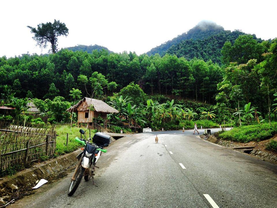 SAIGON MOTORBIKE TOUR TO DA LAT, NHA TRANG, MUI NE, VUNG TAU