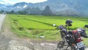Hoi An Motorbike Tour to Hanoi via Hue, DMZ, Mai Chau