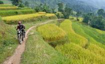 sapa motorbike tour 210x128 - Amazing Sapa-Sin Ho Scenic Motorbike Tours Loop