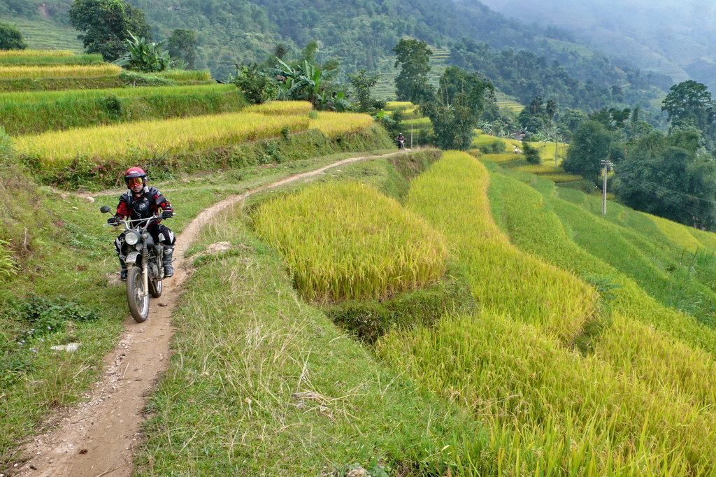sapa motorbike tour - NORTHEAST VIETNAM BACK-ROAD MOTORBIKE TOUR TO HA GIANG AND CAO BANG